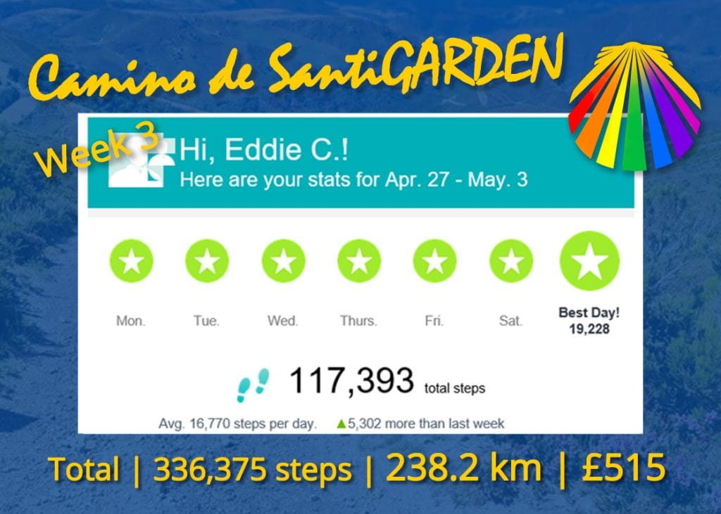 Camino De Santigarden Week 3
